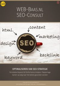 SEO-Consult flyer