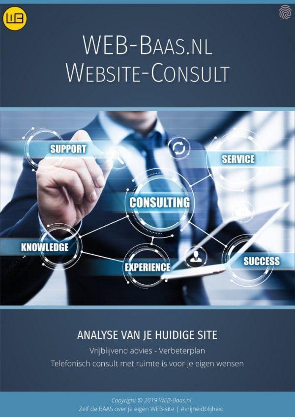 WEBSite Consult Flyer